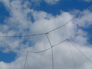 Experimental Homebrew HF Antenna - WICEN Training - 2000